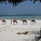 Watamu ranked best holiday destination in Kenya